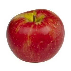 Pommes, poires et kiwis-Pomme Jonagold bio - Kg-VERGER MITAN CRANNE