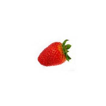 Les fruits d'ici-fraise Gariguette SAVEOL - 250 g-SUBERY NON BIO