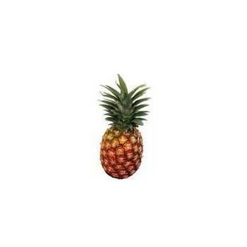 l'Ananas bio - pièce