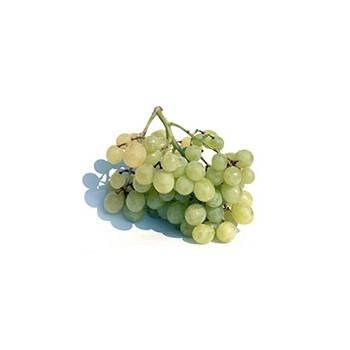 raisin bio blanc (Espagne) sans pepin - les 500 g