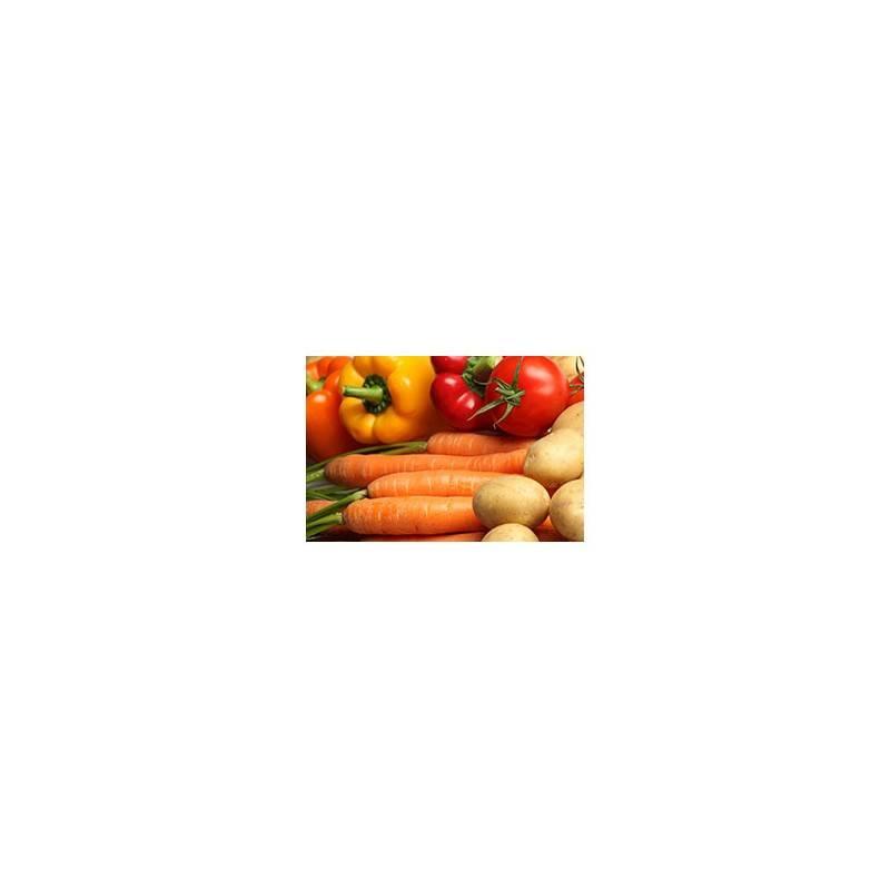 Paniers de légumes-Petit PANIER VERT bio 4 livraisons-PANIERS - LE PETIT LEGUME - BIO