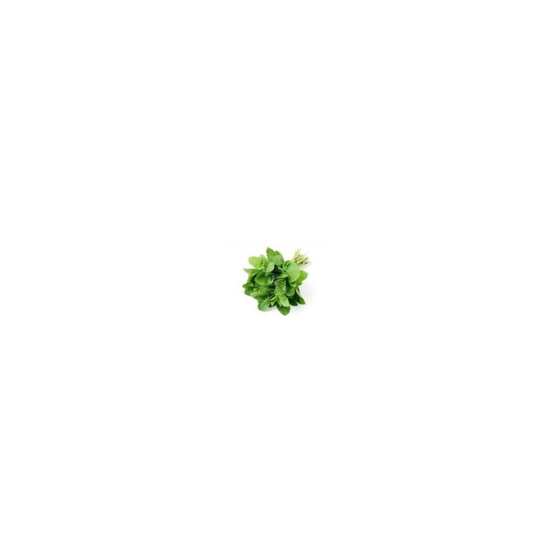 Fruits et légumes-menthe - bouquet-SUBERY NON BIO