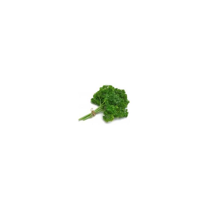 Fruits et légumes-Persil Frisé - La Botte-SUBERY NON BIO