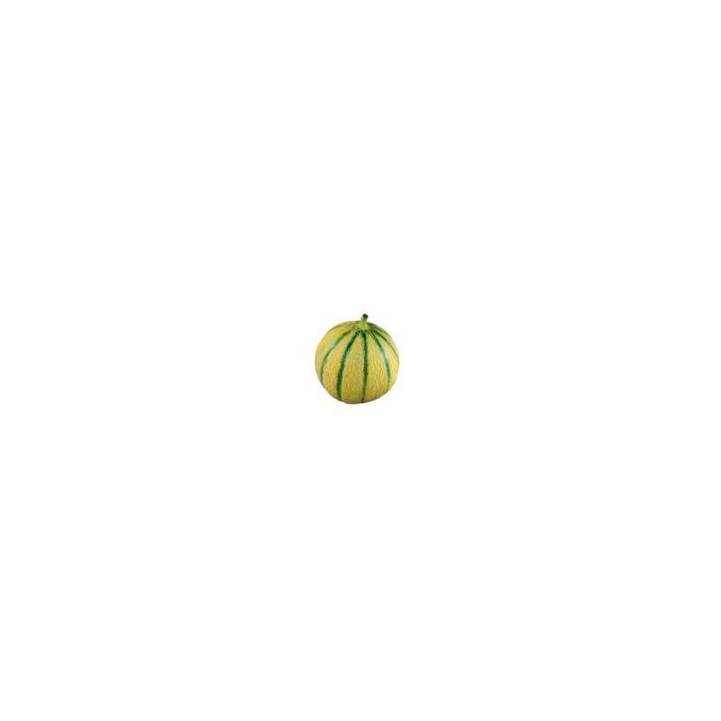 Divers légumes -Melon (Espagne) - 650/800g-SUBERY NON BIO