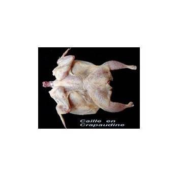 Viandes et Charcuterie-Crapaudine de caille *4-CAILLES DE CHANTELOUP