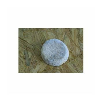 Sourians  chèvre1/2  sec - 160g