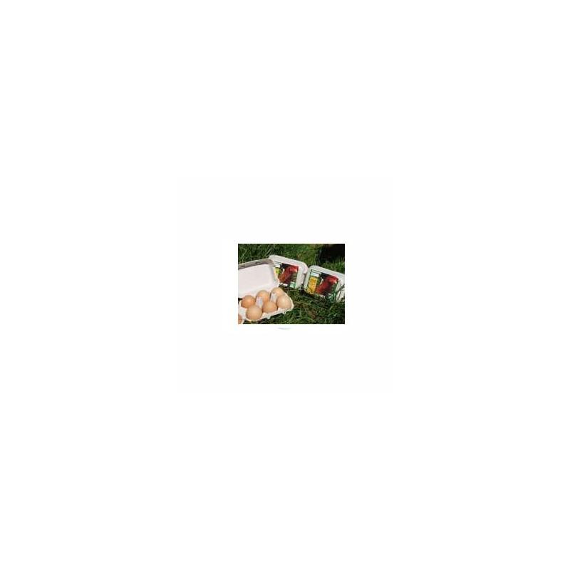 Le frais-Oeufs biologiques boîte M 53/63 g-EARL DE L AULNE