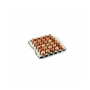 Oeufs plaque 30 calibre M (bio)