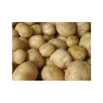 Poireaux, pommes de terre-pomme de terre allians bio-1kg-BIO RENNES