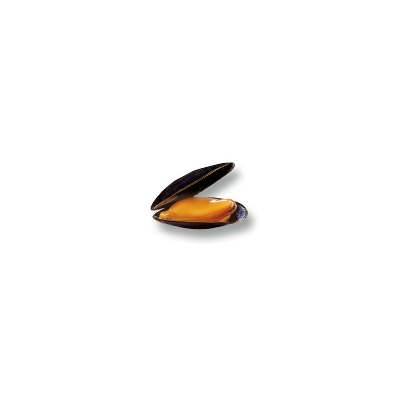Coquillages et crustacés-Moule de bouchot - 500 g-POISSONNERIE SOHIER