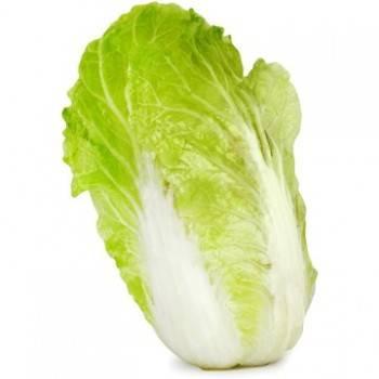 Légumes biologiques-Chou Chinois bio - La pièce de 600 grs env.-RONAN LE GALL