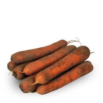 Légumes biologiques-Carottes bio terre - kg-BIO RENNES