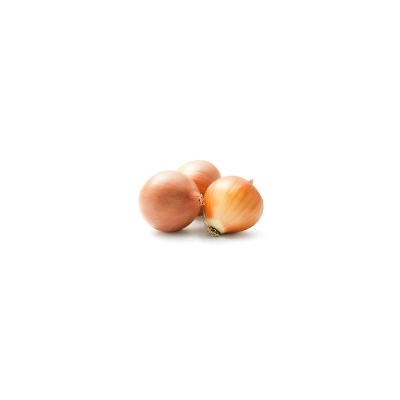 Ail et oignons bio-L'oignon jaune bio (Espagne) - Kg-BIO RENNES