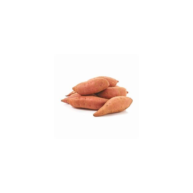 Légumes biologiques-Patates douces (Espagne) Bio - au Kg-BIO RENNES