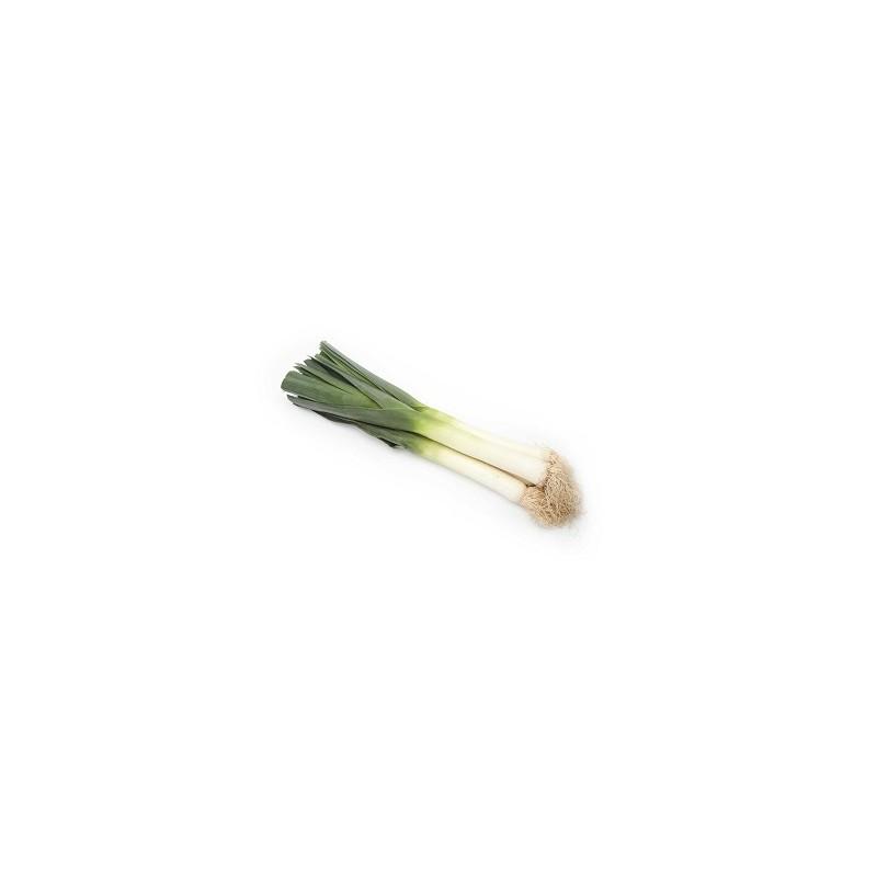 Légumes biologiques-Poireaux Nouveaux Biologique - 1 kg-BIO RENNES