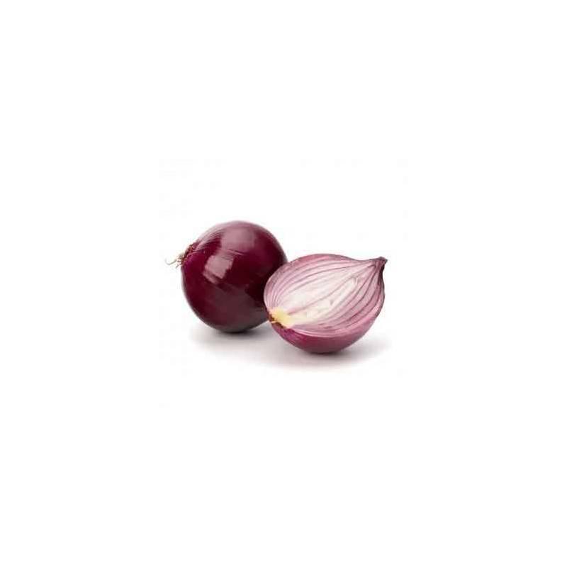 Ail et oignons bio-L'oignon rouge bio- kg-LEGUMES DE VALBO