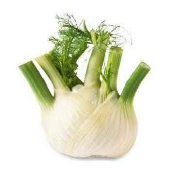 Légumes biologiques-Fenouil bio- 500 g-BIO RENNES