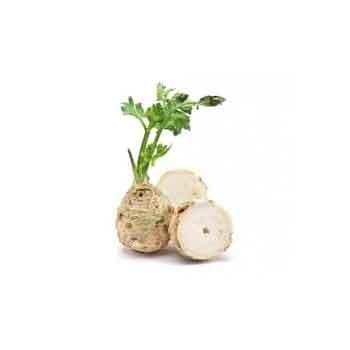 Légumes biologiques-Celeri rave bio- pièce de 700 grs env.-BIO RENNES