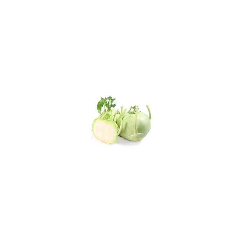 Choux, radis ...-Chou Rave vert - bio piece-LEGUMES DE VALBO