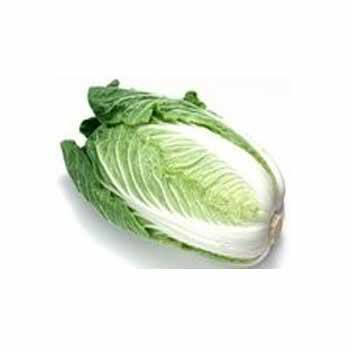 Légumes biologiques-Chou Chinois Bio- La pièce de 750 grs env.-RONAN LE GALL