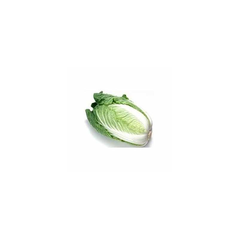 Légumes biologiques-Chou Chinois bio - La pièce de 800 grs env.-BIO RENNES