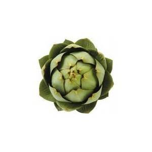 Divers légumes -artichaut camus breton bio- la pièce-BIO RENNES