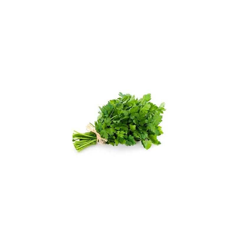 Salades, herbes aromatiques-Persil plat biologique - La botte-RONAN LE GALL