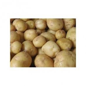 Poireaux et pommes de terre-Pommes de terre- charlotte par 10 KG-GAEC BOCEL