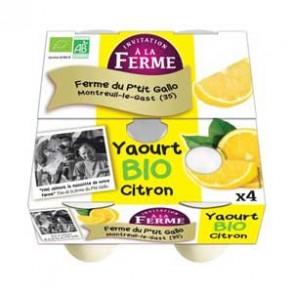 Les yaourts (vache)-Yaourt bio aromatisé citron- 4*125 g-LE P TIT GALLO