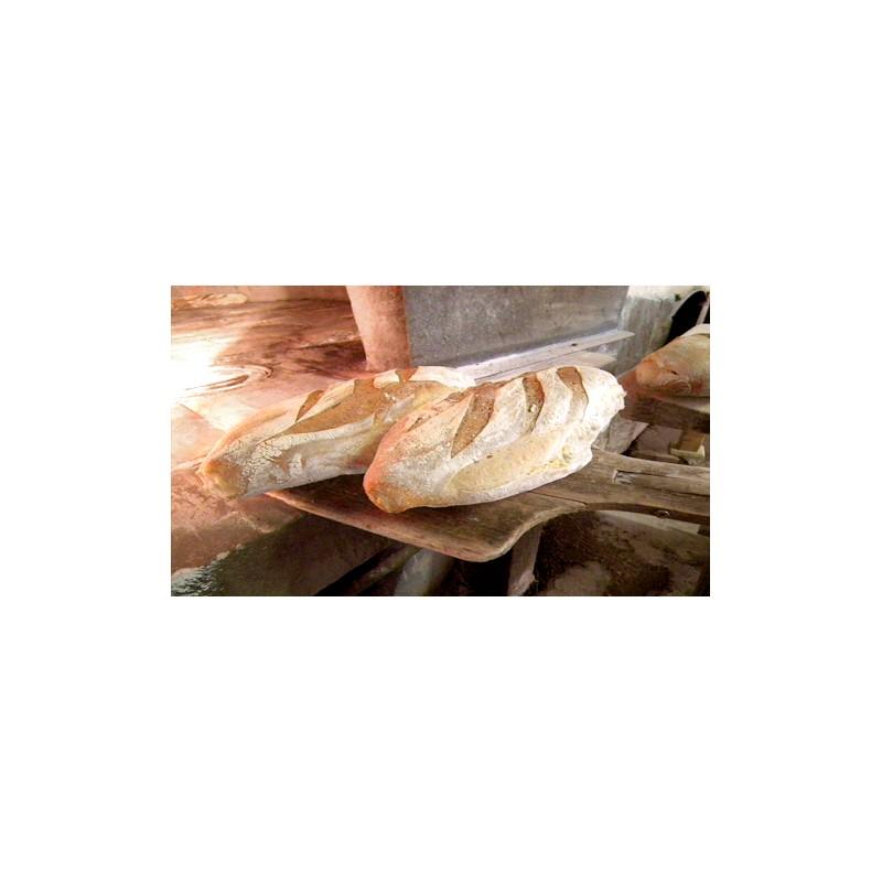 Pain blanc-Paysan blanc Bio 1 kg tranché-Fagots et Froment