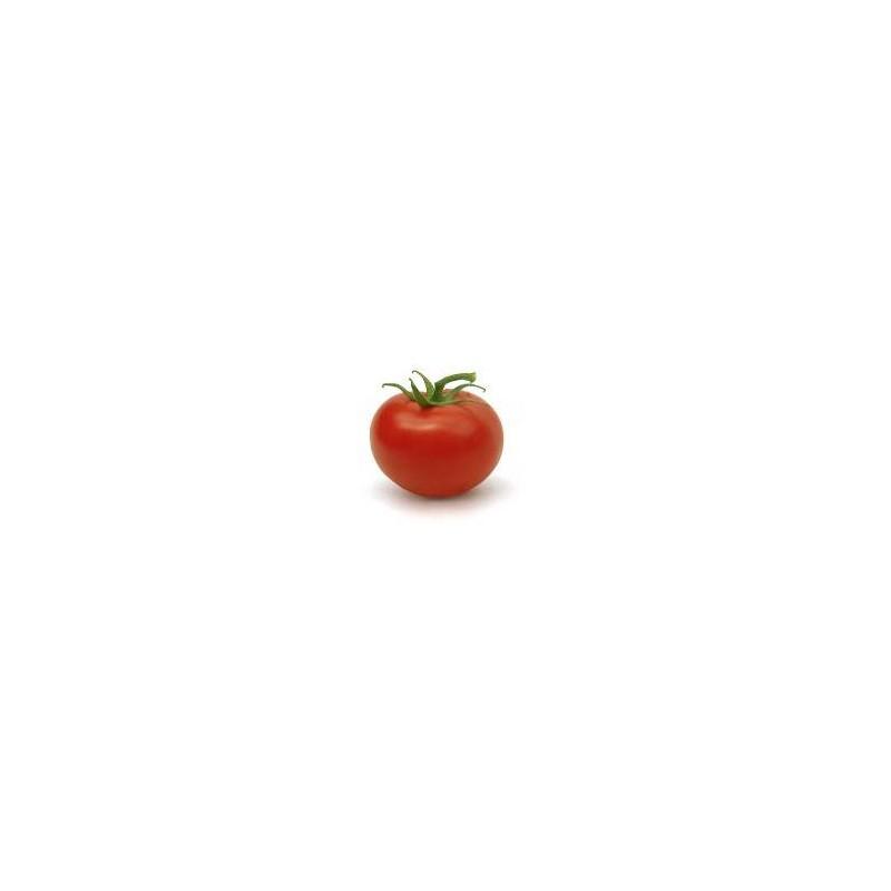 Tomates et concombres bio-Tomate grappe bio- 1 kg-BIO RENNES