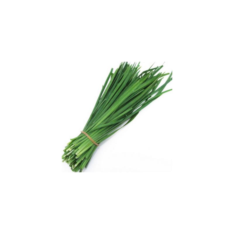 Herbes aromatiques-ciboulette biologique - Botte-RONAN LE GALL