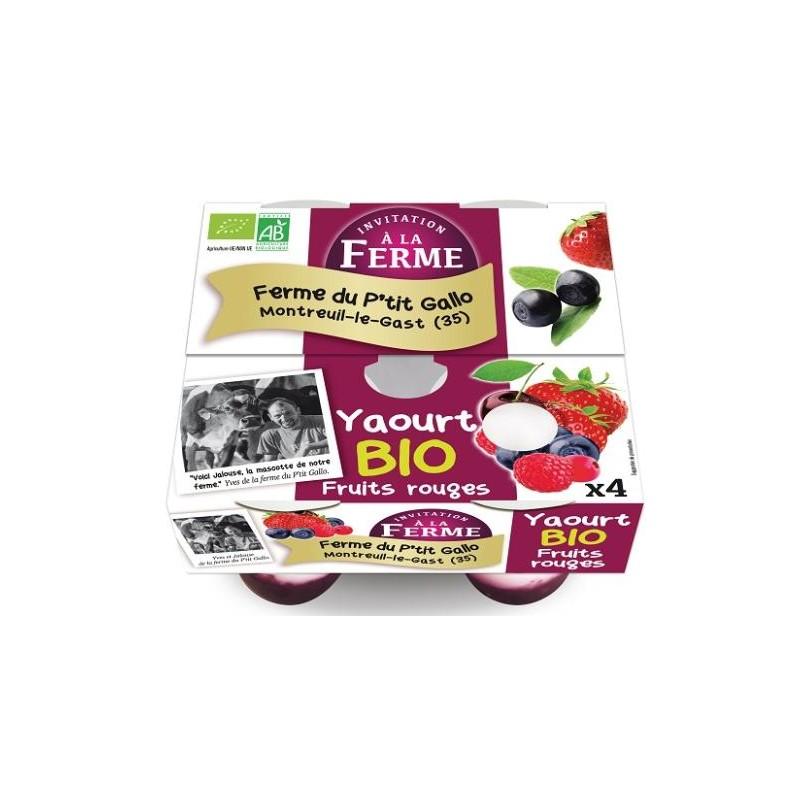 Les yaourts (vache)-yaourts aux fruits rouges par 4- bio-LE P TIT GALLO
