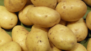 Poireaux, pommes de terre-Pommes de terre Bio Mona Lisa 2.5 kg-GABILLARD EARL