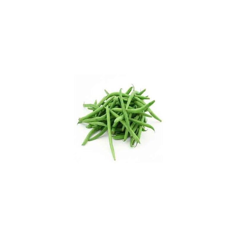 Haricot, petits pois et fêves-Haricot vert bio-500 G-RONAN LE GALL