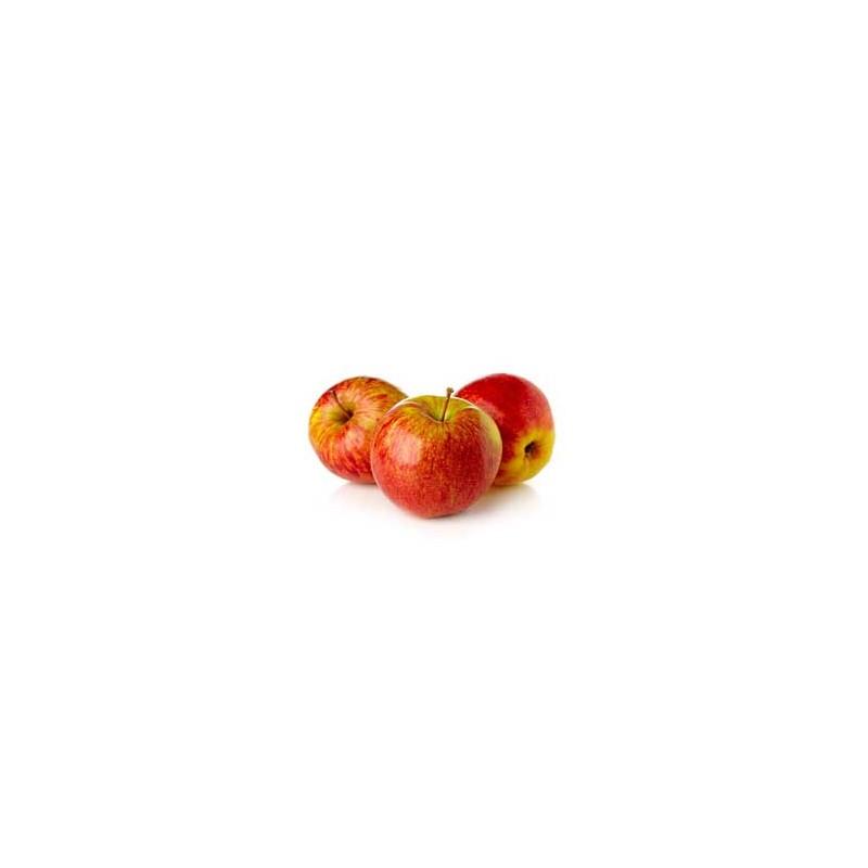 Pommes, poires et kiwis-Pomme - Elstar Kg-SUBERY NON BIO