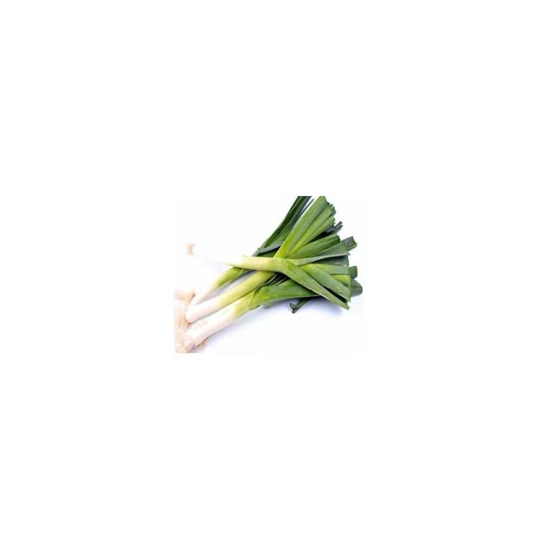 Fruits et légumes-Poireaux nouveau Bocel au kg-GAEC BOCEL NON BIO