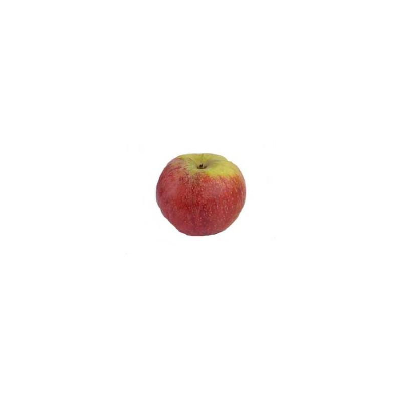 Les fruits d'ici-Pomme Biologique -Suntan-kg-VERGERS DE L'ILLE