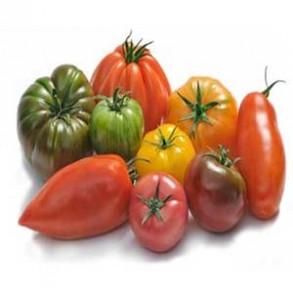 Accueil-Tomate assortiment - kg-GAEC BOCEL NON BIO