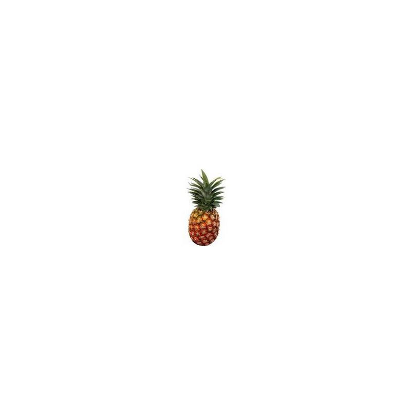 Fruits frais-l'Ananas - pièce-SUBERY NON BIO