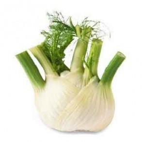 Légumes biologiques-Fenouil bio- la pièce (400grs env)-BIO RENNES