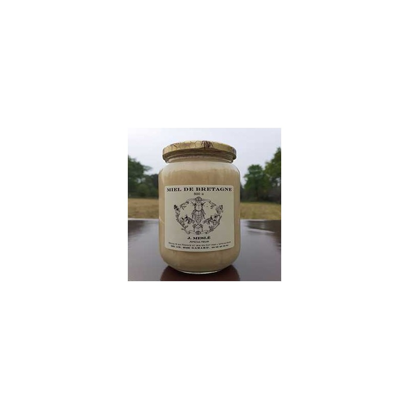 Confitures, Miel et Tartinable-Miel fleurs de Printemps - 500 grs-Meslé Jérome