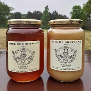 Miel, pain d'épices ...-Miel de fleurs d'été crèmeux- 500 g-Meslé Jérome
