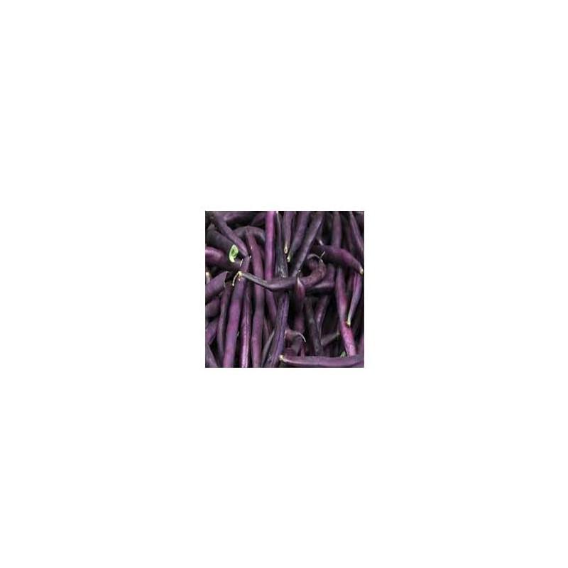 Haricot, petits pois et fêves-Haricot violet biologique-500 grs-LEGUMES DE VALBO
