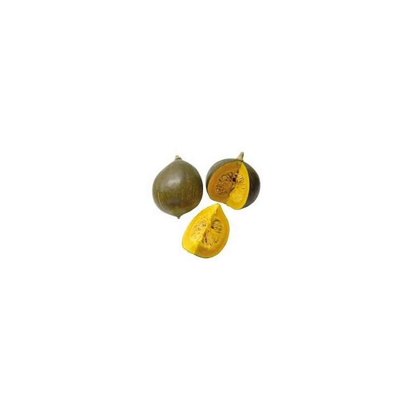 Potimarron, courges-Courge portion 1 kg - verdaline ou bleu Hongrie-RONAN LE GALL