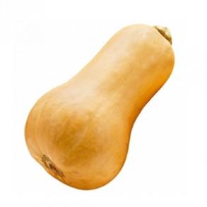 Potimarron, courges-butternut biologique- ENV 1.5 KG-GABILLARD EARL