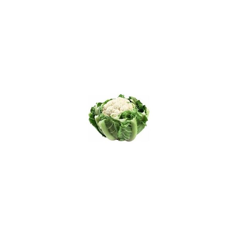 Choux, radis ...-Chou Fleur - la pièce-GAEC BOCEL NON BIO
