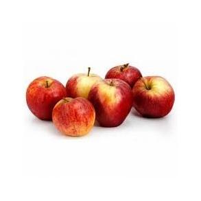 Pommes, poires et kiwis-Pomme Gala bio- Kg-VERGER MITAN CRANNE