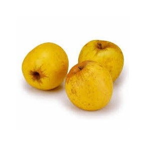 Pommes, poires et kiwis-Pomme Biologique -Opale au Kg-VERGER MITAN CRANNE