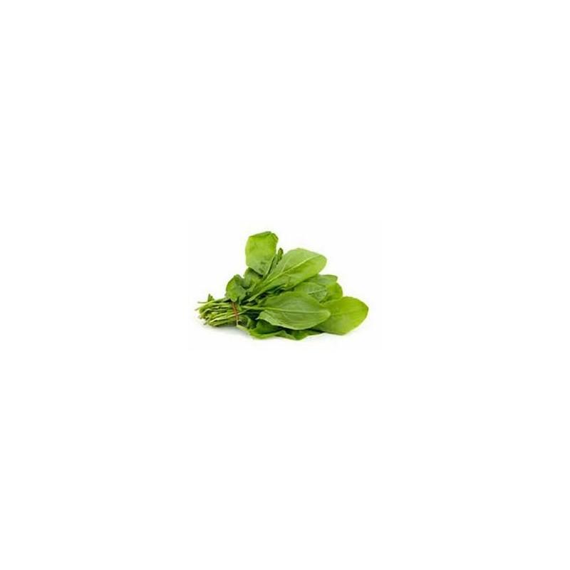 Herbes aromatiques-Oseille biologique- la botte-LEGUMES DE VALBO